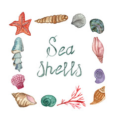 A set of sea shellfish painted in watercolor, isolated on a white background, with a calligraphic inscription. Hand painted for beautiful invitation design, greeting cards, posters and bags.