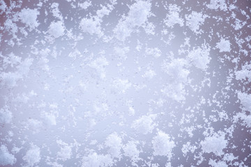 Large snow flakes on the window, macro, close up.