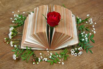 Rose steckt in der Bibel