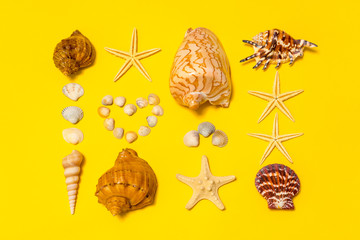 Summer composition. Different seashells and starfish lying on yellow paper background symbolizing the sand. Flat lay, copy space, top view. Summer vacation concept