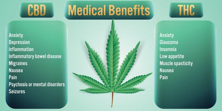 CBD,THC Cannabis Medical Benefits background.Vector Illustration