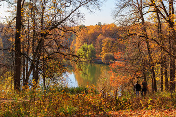View of pond in Tsaritsyno park in Moscow on a background of trees with colored leaves on the shore at sunny autumn day