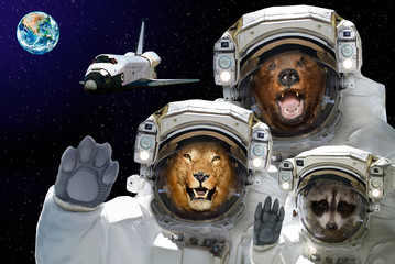Space is available to all. Bear, raccoon and lion in space against the background of the space shuttle and the planet Earth. Elements of this image furnished by NASA.