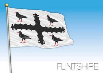 Flintshire county flag, United Kingdom, Wales, vector illustration
