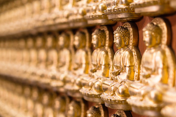 Wall in temple made by thousand of small golden Buddha statue at Chinese temple named the Wat Borom Raja Kanjanapisek (Wat Leng Neur Yee 2) in Thailand