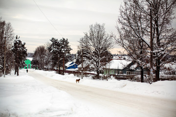 Frost and snowy winter, on the street in the Russian village..