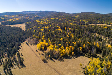 Fall Colors by Drone