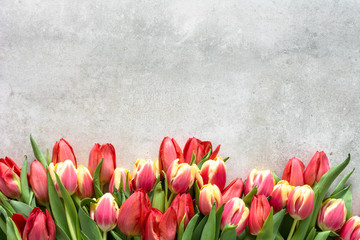 Colorful bouquet of tulip, spring easter background, anniversary gift for mothers day or card for women's day