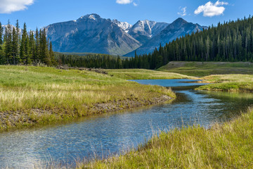 Mountain Creek - A Spring morning view of a clear creek winding through green meadow and dense forest at base of Mt. Astley, Banff National Park, Alberta, Canada. Wall mural