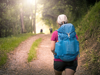 a girl with backpack travels along forest in Camino de Santiago