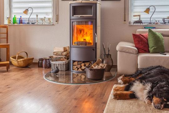 HDR brennender Kamin im Wohnzimmer mit schlafendem Hund davor