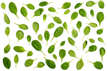 Spinach pattern background on white.