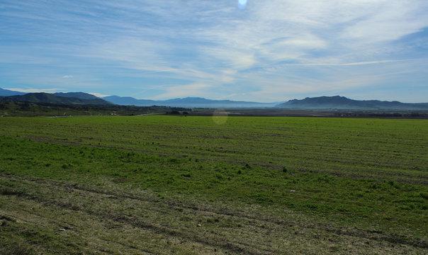 Green field off Gilman Springs Road near the Moreno Valley  in Riverside, California