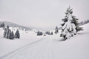 Mountain road during winter