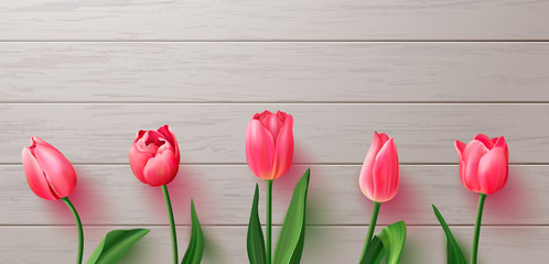 Beautiful realistic tulips on wooden background.Vector illustration for postcards,posters, coupons, promotional material.
