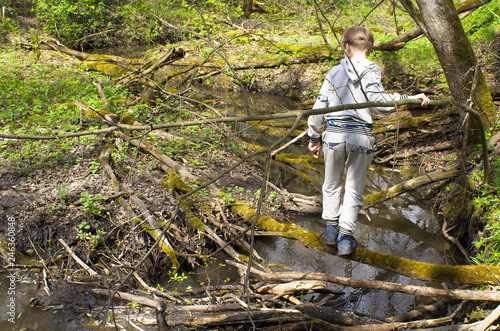 96c8b7fb44352 Boy tourist crossing the forest river on a fallen tree trunk bright summer  day.