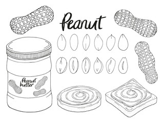 Collection of hand drawn peanut, bread with peanut butter. Isolated image. Black and white. Vector illustration.