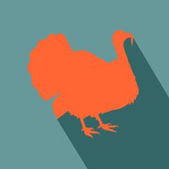 Animal turkey flat design icon vector eps 10
