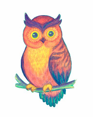 Bright flower owl, fairy tale character. Drawn by hand with watercolor pencils.
