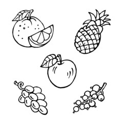fruit set, apple, pineapple, orange, grapes, currant, black and white clipart