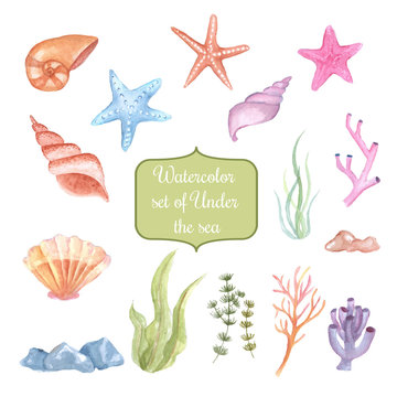 watercolor set of under the sea, clipart