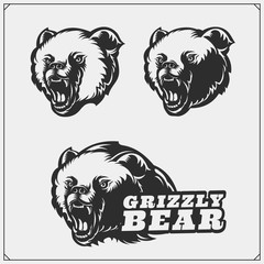 Grizzly bear silhouettes and illustrations. Labels, emblems and design elements for sport club with grizzly bear. Print design for t-shirts.