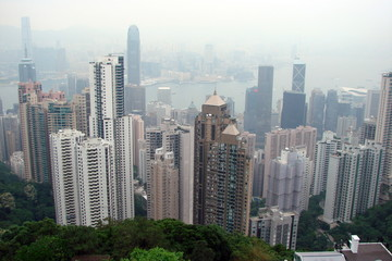 Panorama from the top of a hill of modern areas of the Asian metropolis with high skyscrapers on the coast of the Gulf covered by fog.