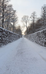 Peterhof, fountains and park in winter