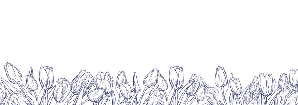 Flat horizontal banner template with outline tulips on white background
