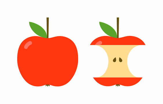 Red apple and apple core, simple flat style vector illustration isolated on white background
