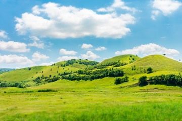 Photo sur Aluminium Colline green hill in summer landscape. beautiful countryside scenery. fluffy clouds on a bright blue sky. tilt-shift and motion blur effect applied.