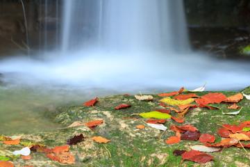 Detalle cascada con hojas de colores otoñales Wall mural