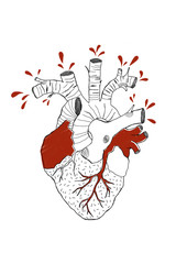 Heart and Roots