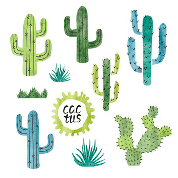 Set of watercolor cactus isolated on white background. Vector illustration.