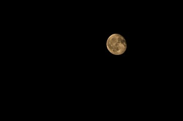 Luna gialla nel cielo  notturno