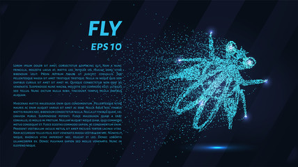 Fly. Glowing dots to create the shape of flies.