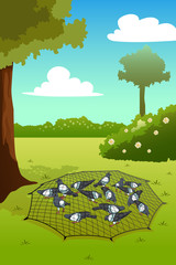 Pigeons Trapped on Ground Illustration