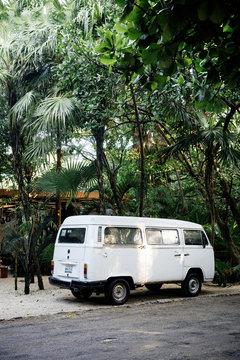 caravan in the jungle