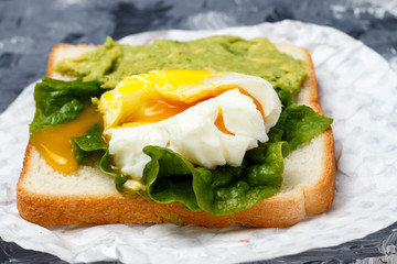 Sandwich with avocado and egg close-up, white and gray background