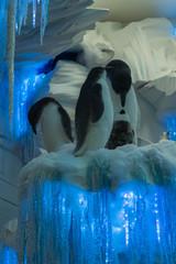 Plüsch-Pinguine in einer Schaufenster-Dekoration