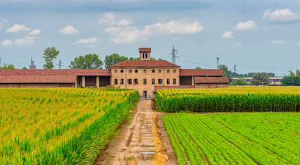Rural landscape near Casale Monferrato