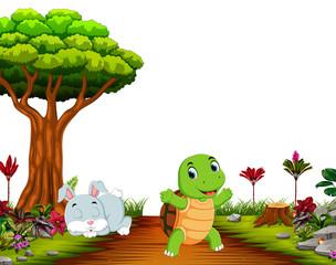 A bunny sleep under tree while tortoise run on road