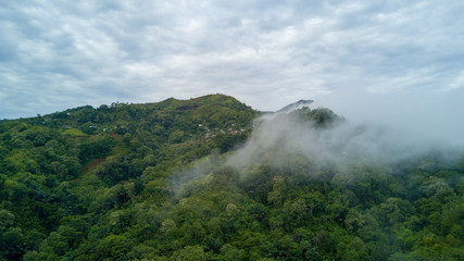Drone shot aerial green fertile rainforest mountain landscape and clouds in Flores - Indonesia at raining season