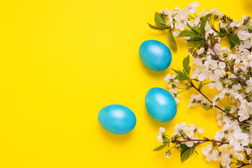 Cherry Blossom Branch and Easter Blue Eggs on the Yellow Background.