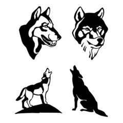 wolf head, standing, sitting, set of black and white drawing