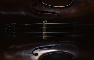 Old Cello Body