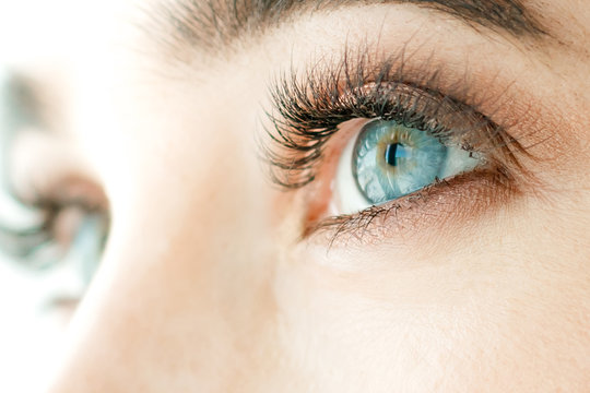 Girl's eyes, blue, close-up. The concept of vision correction or lenses.