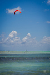 Beaches of Brazil - Antunes Beach, Maragogi - Alagoas state