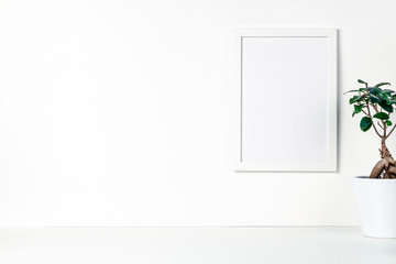 Shelf on a white empty wall. Copy space. Place for text. Scandinavian style. White empty frame mockup. Bonsai in a white flowerpot