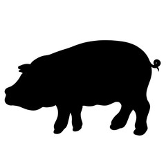 fat pig, black silhouette of animal, animal husbandry